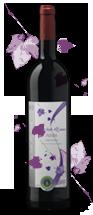vino-ecologico-finca-los-alijares